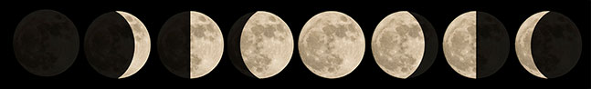 8 moon phases